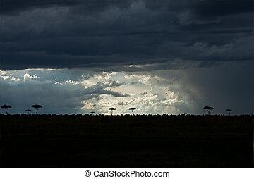 Mara Sky