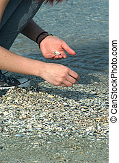 Picking shells - on the beach