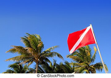 Scuba diver down flag tropical palm trees blue sky