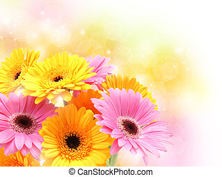 Gerbera daisies on pastel sparkly background - Colourful...