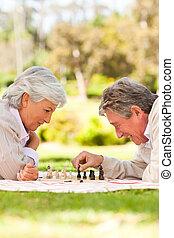 aposentado, par, tocando, xadrez