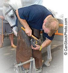 HERRADOR, trabajo, -, shoeing, caballo