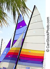 hoby hobby cat colorful sails palm tree leaf summer sport...