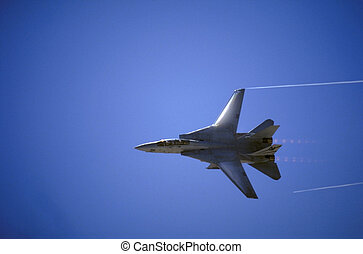 F-14 Tomcat in low fly