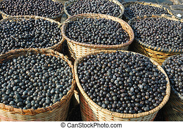 Acai Fruit Harvest and Market - Acai, the small superfruit...