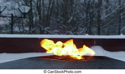 Eternal flame on the monument to unknown soldier of World...