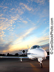 Private jet - Portrait of a corporate jet on the runway...