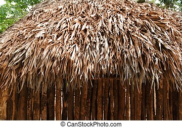 Hut palapa mexican jungle Mayan house roof wall detail