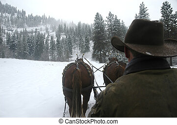 Snow Ride - Back of horse coachman riding in the snow