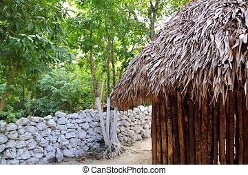 choza, Palapa, mexicano, selva, Maya, casa, techo, pared