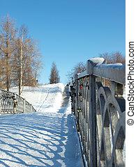The bridge in park