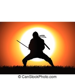 Ninja - Silhouette illustration of a Ninja on grass field