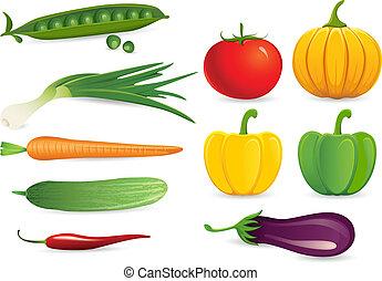 Set of Vegetables - illustration of set of fresh vegetables...