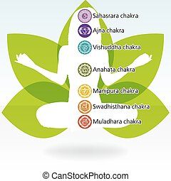 Yoga lotus template EPS 8 vector file included