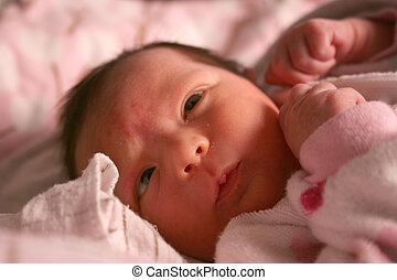 young newborn baby laying in a crib