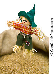 scarecrow - funny little scarecrow stuck in a sack of grain