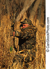 Bowhunter at Full Draw - a bowhunter with compound bow at...