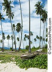 old boat in coconut beach, borneo