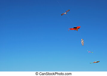 Kites on blue sky