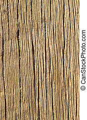 Old wood texture lines background.