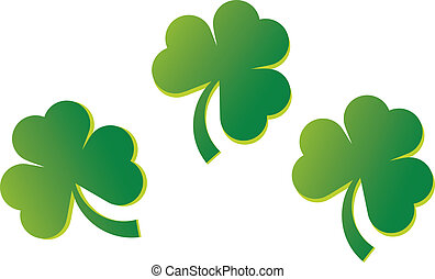 Three Shamrrocks - Three shamrocks are featured in an...