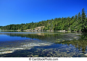 Coastline, Victoria, BC, Canada - Coastline of Victoria on...