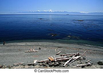 Secret Bay - Coastline, Victoria, BC, Canada - Coastline of...