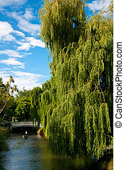 Punting on the Avon River in Christchurch, New Zealand