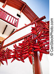 Drying Peppers - Red peppers drying under the sun. Espelette...