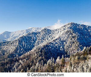 Mount leconte in snow in smokies - Famous Smoky Mountain...