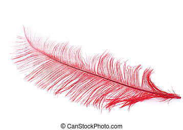 Red plume - Bright red plume over pure white background
