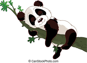 Panda sleeping on a branch - Cute panda sleeping on a branch...