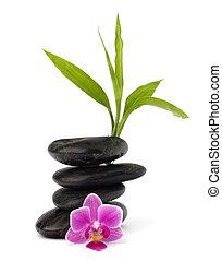 Zen, seixos, equilíbrio, spa, cuidados de...