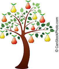 vector pear tree