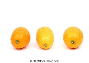 kumquat close up isolated on white