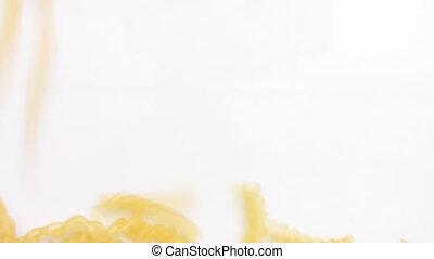 macaroni 81 - Macaronis on white background