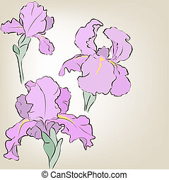 Irises Vector greeting card Mothers Day