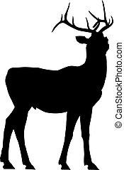 Deer silhouette - Vector outlines of the deer silhouette