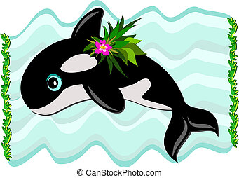 Killer Whale Swimming - Here is a young cute Killer Whale...