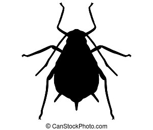 Aphid Silhouette