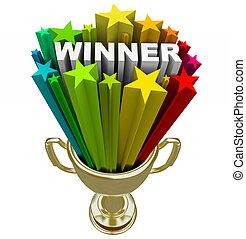 ganador, trofeo, -, explosión, estrellas, fuegos...