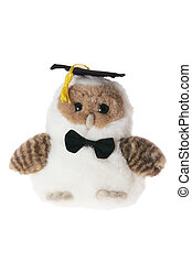 Graduating Owl on White Background