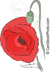 Poppies. Vector greeting card. Mother's Day