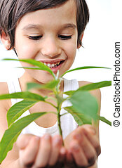 4-5-6 years old boy with green plant isolated on white