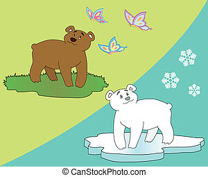 bears - polar bear and brown bear