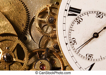 Watch Gears - Closeup of the interlocking gears of a pocket...