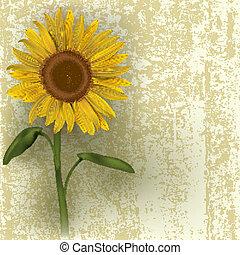 abstract floral illustration - grunge floral illustration...
