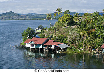 The house established on piles. New Guinea - The house...