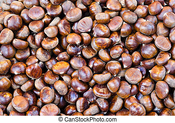Edible chestnuts