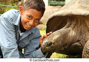 School boy with giant tortoise - Boy visits Jonathan the...